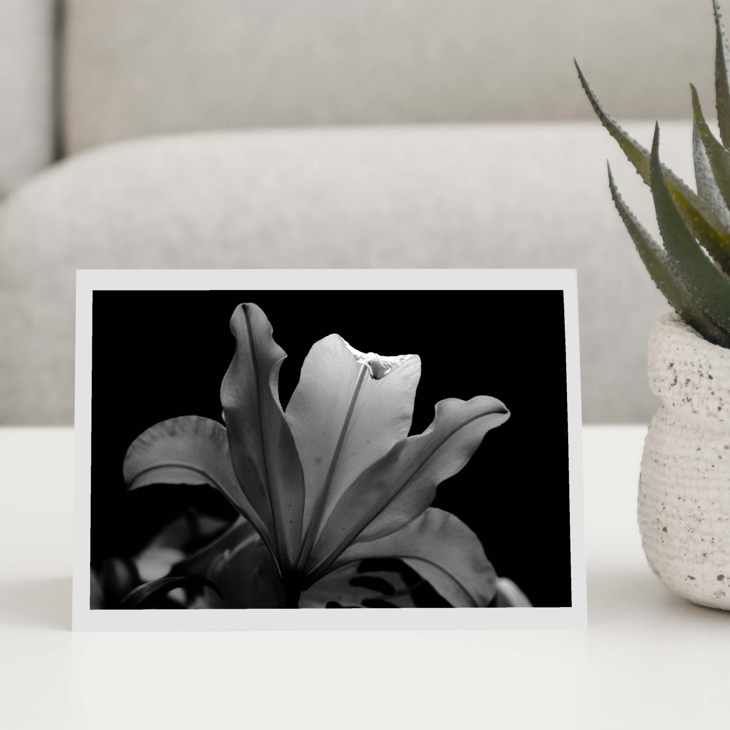 Black and White Lily Greeting Card