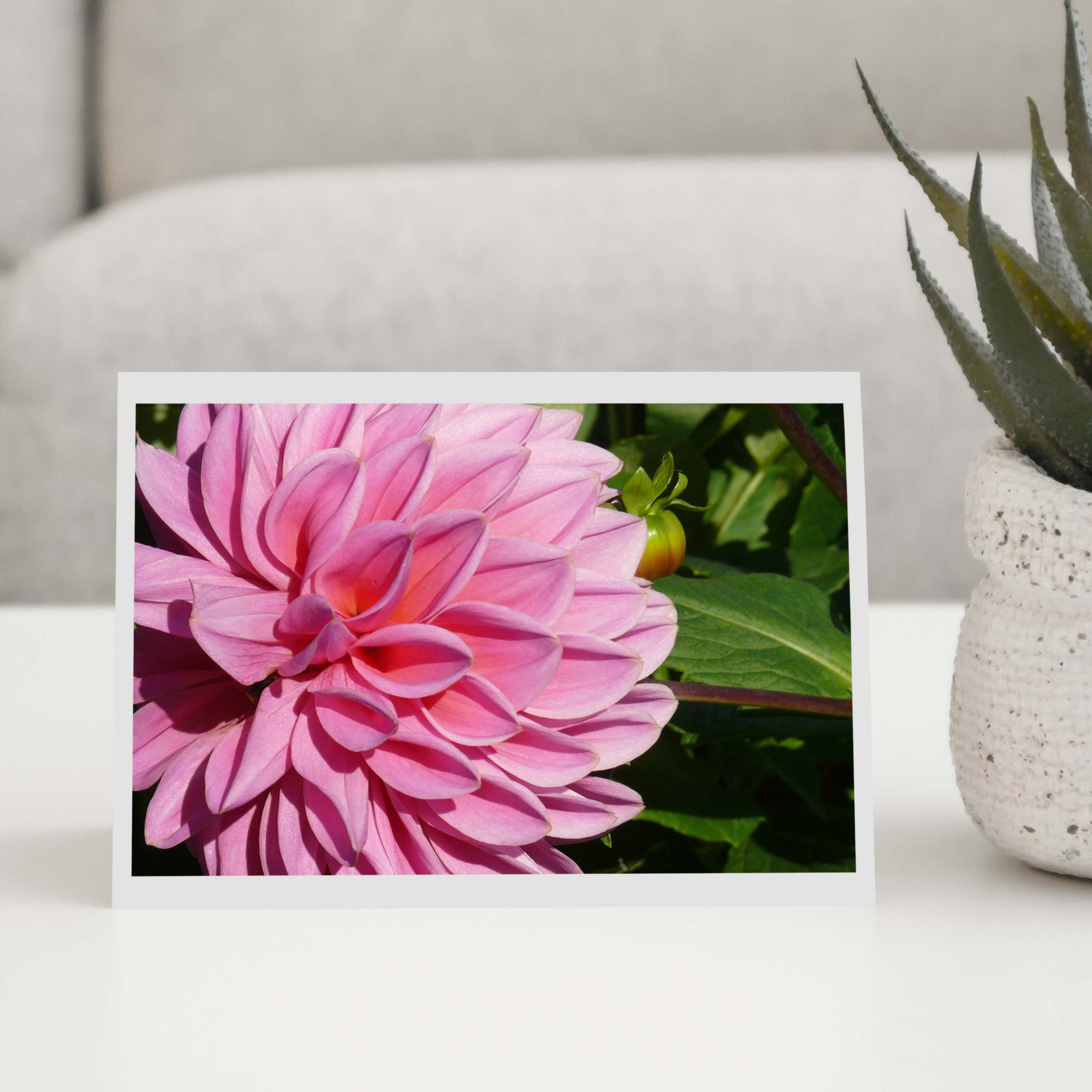 Mixed Coloured Flower Greeting Cards