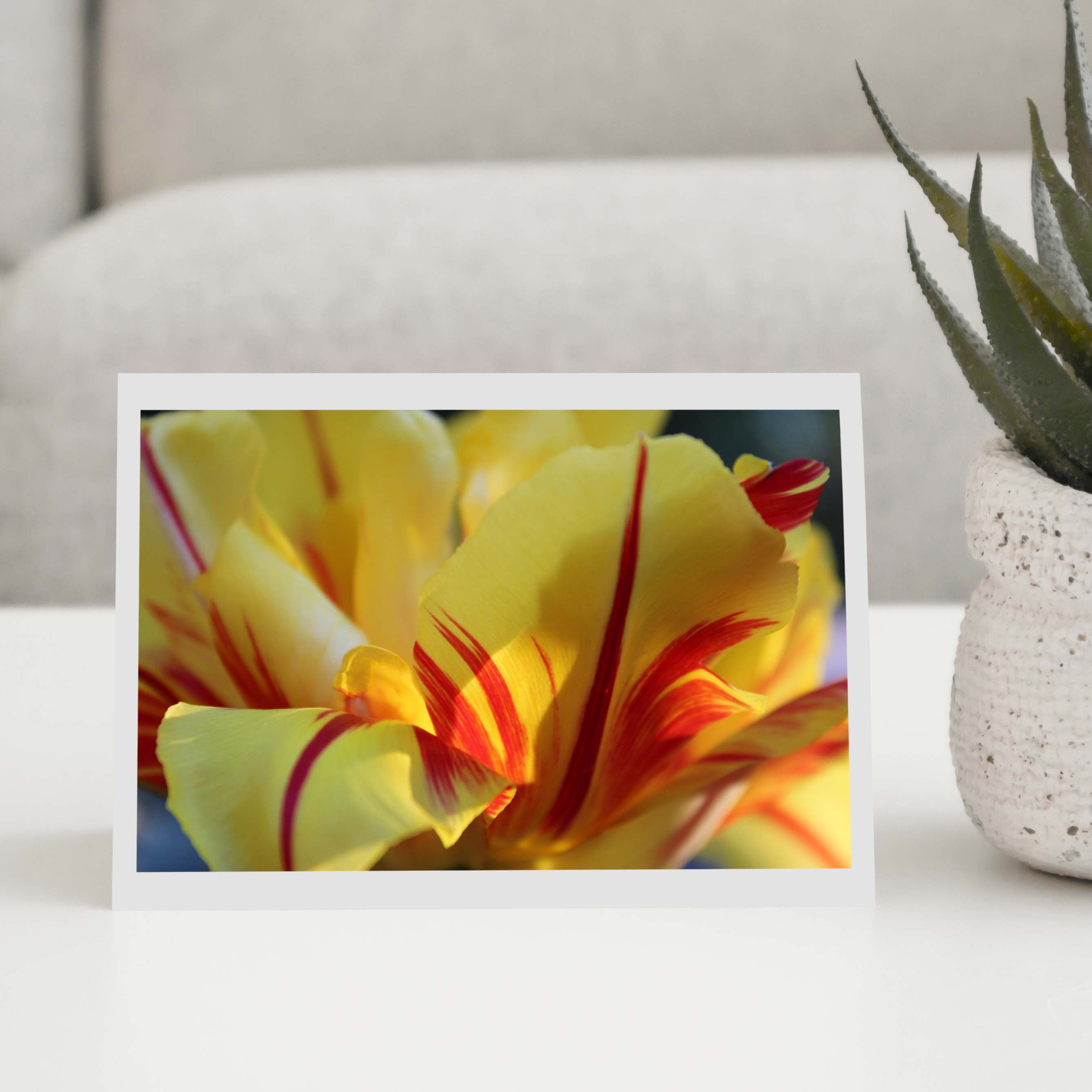 Floral Greeting Card Packages
