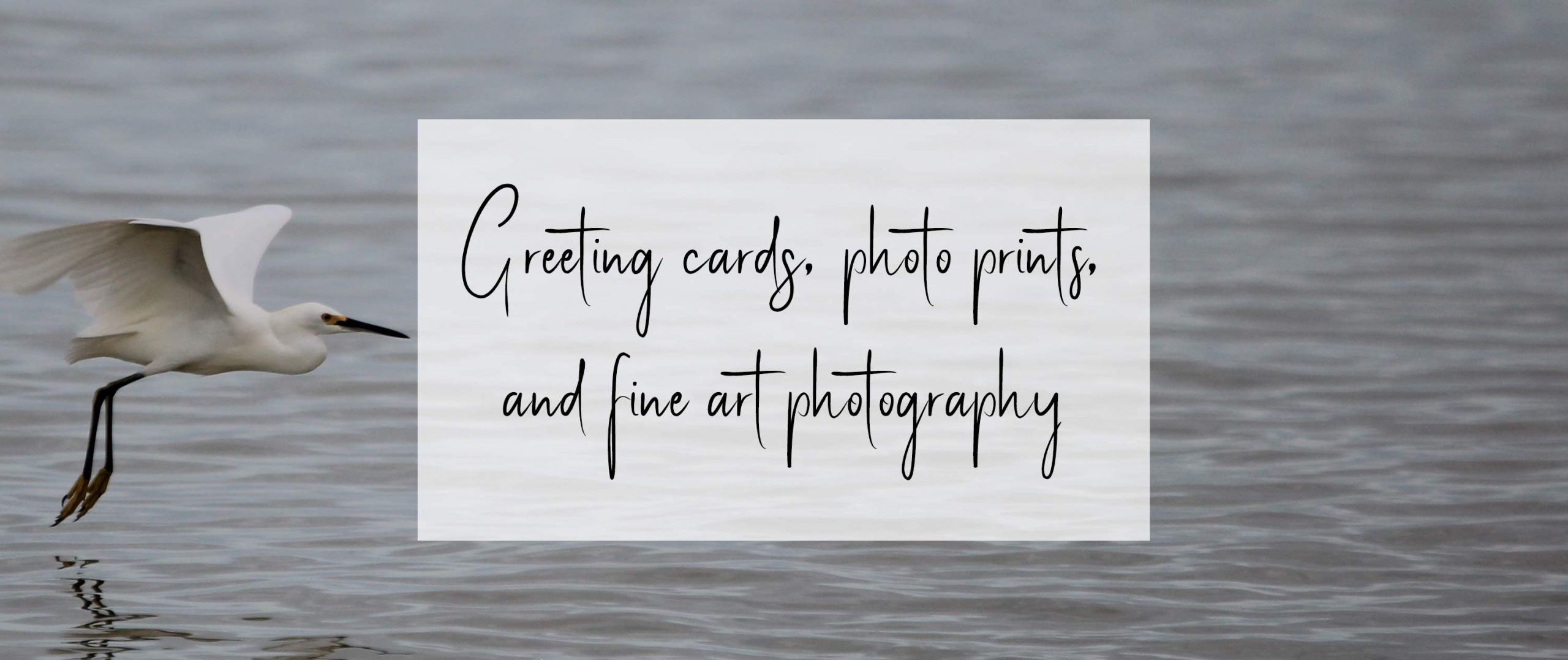 Greeting Cards, Fine Art Photography & Photo Prints